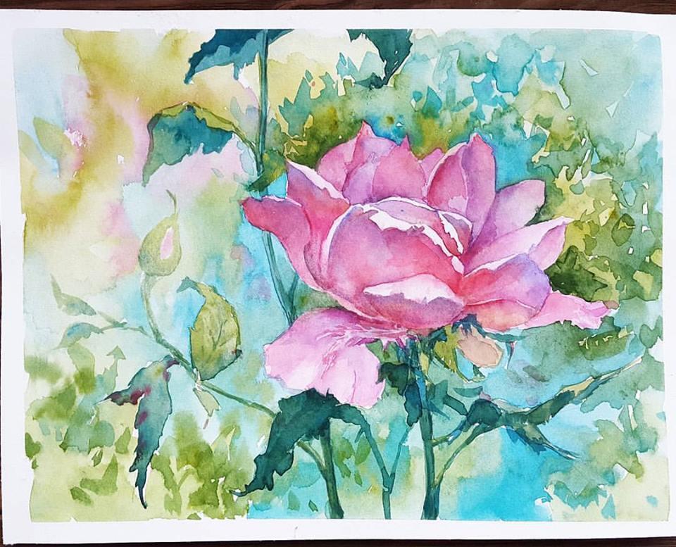 розы - акварель