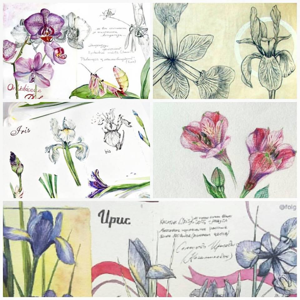 #ботанический_скетчбук
