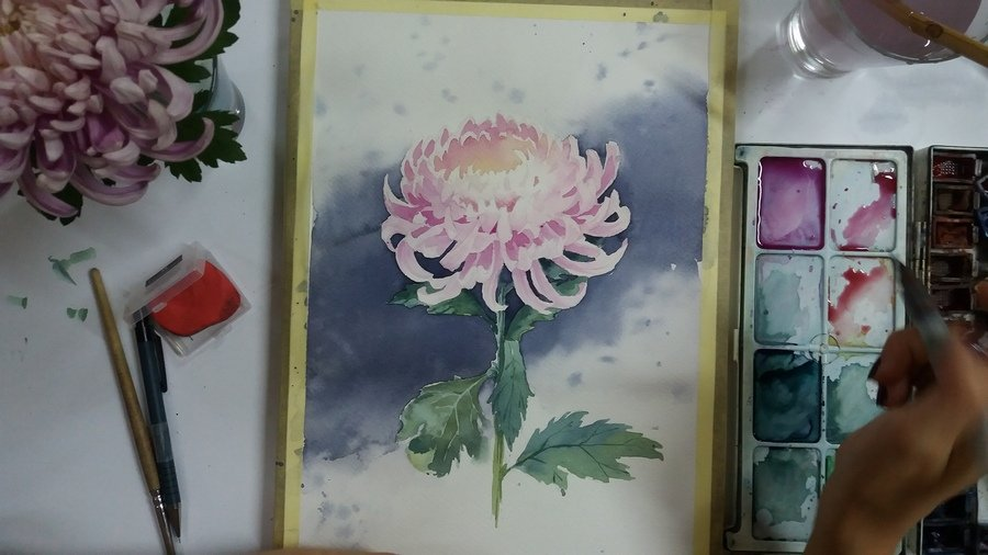 готовый рисунок хризантемы-900х506