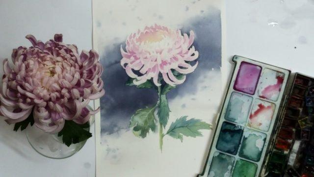 рисование хризантемы